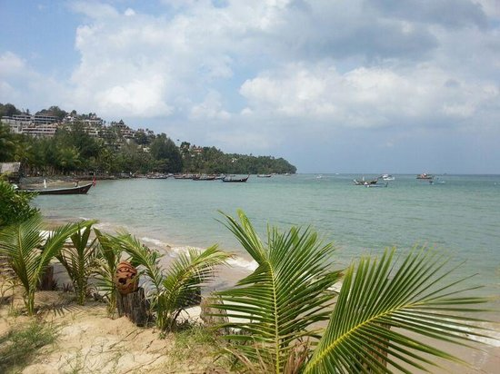 Andaman Bangtao Bay Resort:                   the view from the deck chairs