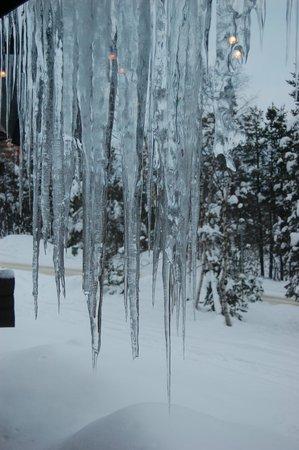 戴維極地飯店照片
