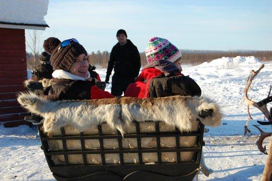 Davvi Arctic Lodge:                   Reindeer Ride