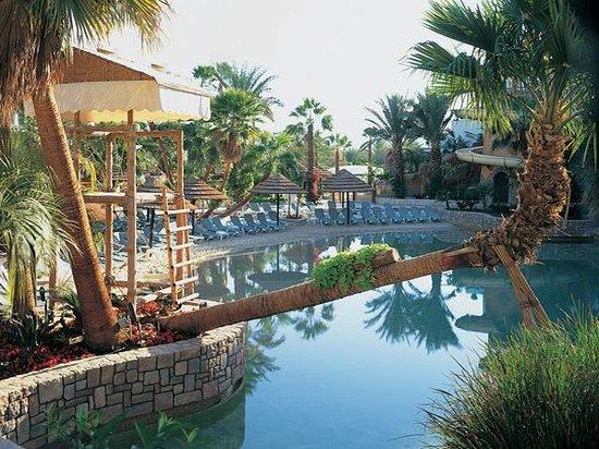 Isrotel Royal Garden:                   pool