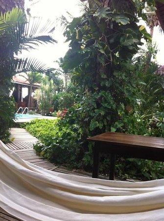 Pousada Vila Bela Vista:                   giardino                 