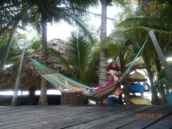 Xanadu Island Resort:                   hammock at the pool