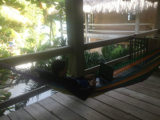 Xanadu Island Resort:                   Hammock on #15