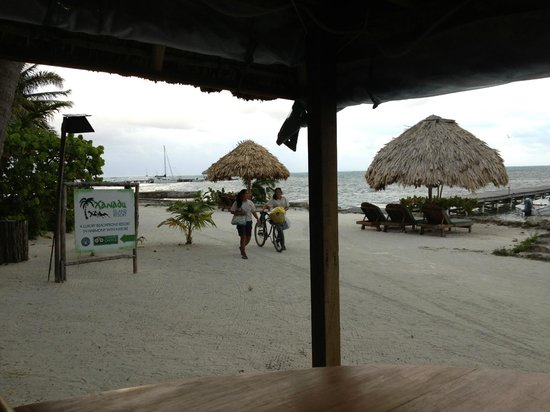 Xanadu Island Resort:                   View from inside BBQ area