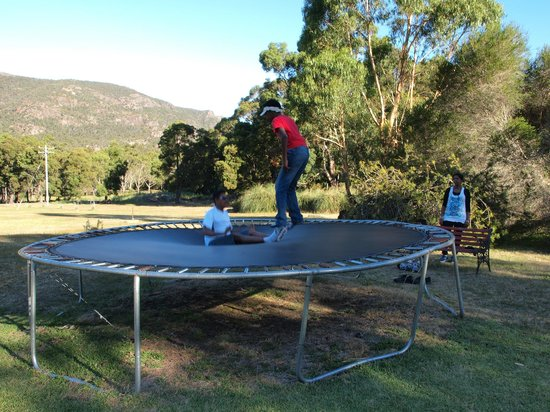 The Grampians Motel & The Views Restaurant, Halls Gap:                                     trampoline near pool