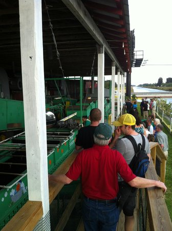 Al's Family Farms:                   walking tour of processing equipment