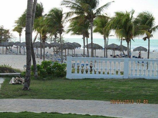 """Paradisus Varadero Resort & Spa:                   Lots of loungers/palpalas - no need to """"save"""" chairs"""