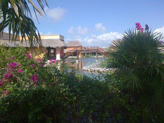 TRS Yucatan by Palladium:                   Overlooking the mangrove swamp toward the Riviera Lobby