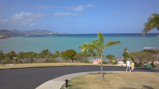 The Buccaneer -- St Croix:                   View from resort