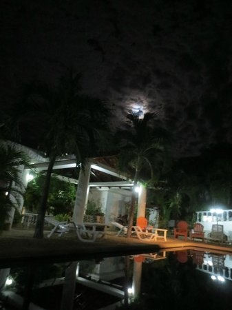 Hotel Flores:                   Full Moon over Pool and Courtyard