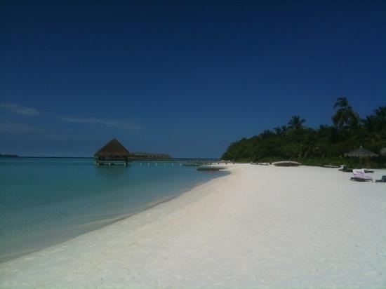 Constance Moofushi:                                     beach
