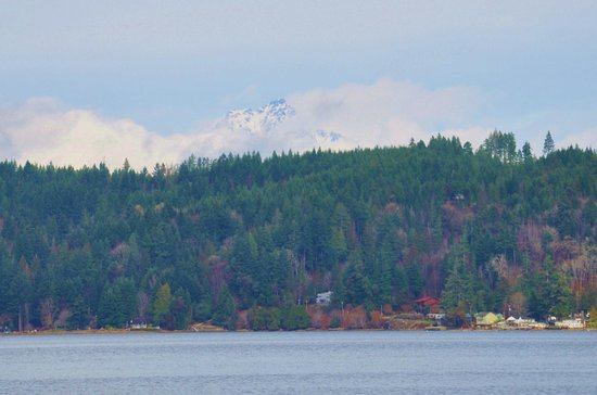 Alderbrook Resort & Spa:                                     View across Hood Canal