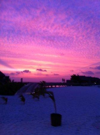 康斯丹马尔代夫魔富士度假酒店照片