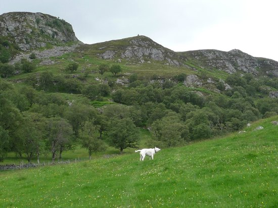 Highland Holiday Cottages:                                     Cruben Beag
