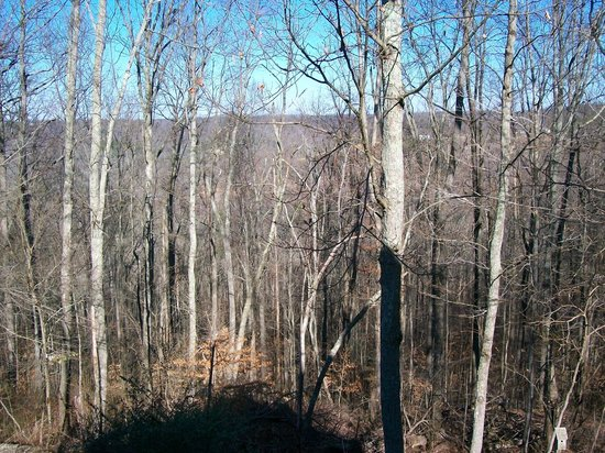 Lake Cumberland Resort:                   View