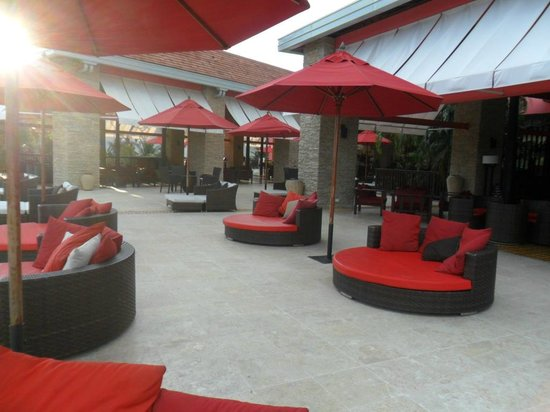 Royal Decameron Baru:                   terraza
