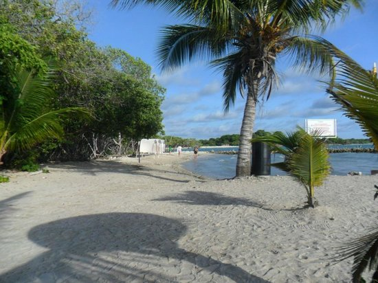 Decameron Baru:                   Playa