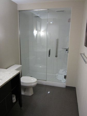 Sabal Hotel Orlando West:                   Rainfall Shower