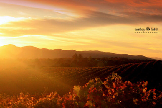Santa Ynez Valley, CA:                   Santa Ynez Wine Country