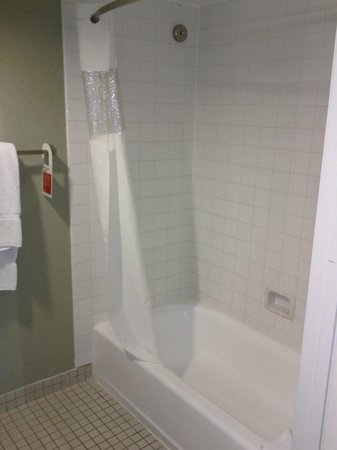 Ramada Plaza Garden Grove/Anaheim South:                   Shower