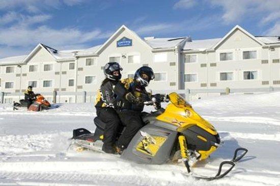 Lakeview Inns & Suites – Miramichi :                   Snow fun
