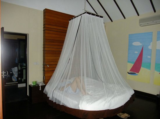 Bay of Bengal Resort:                   Mosquito net on bed