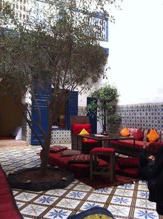 Riad El Az:                   courtyard where we had breakfast