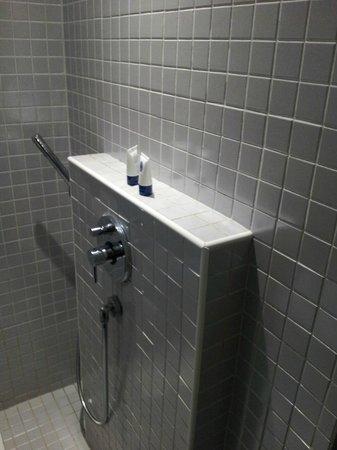 The Porcelain Hotel:                                     Bathroom