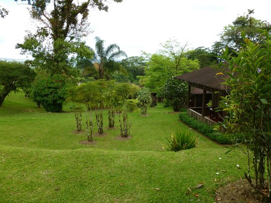 Hotel Lomas Del Volcan:                                     back porch looking onto beautiful grounds