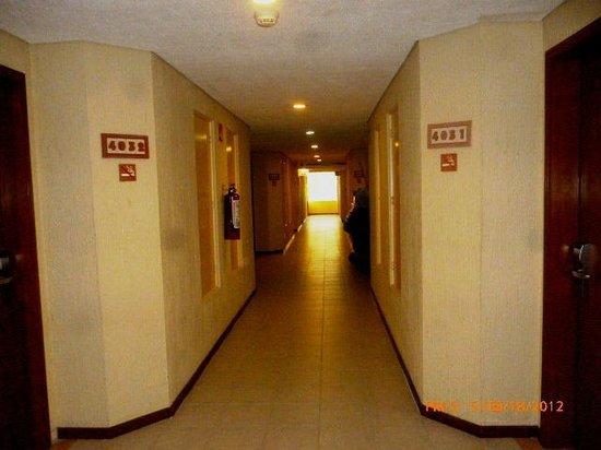 Occidental Tucancun:                   pasillos dentro del htl