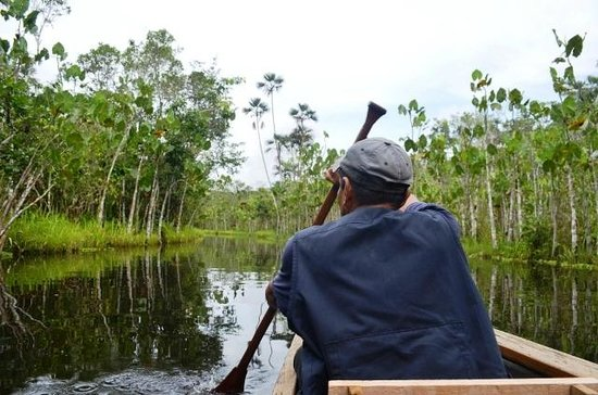 Sacha Lodge:                   canoeing to the lodge