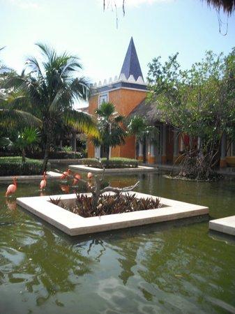 IBEROSTAR Paraiso Del Mar:                                     by lobby