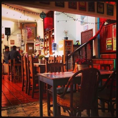 Cocoliche San Cristobal :                   cocoliche day ligth