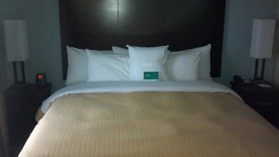 Homewood Suites by Hilton Cedar Rapids North:                   King Bed/Suite