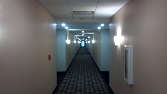 Homewood Suites by Hilton Cedar Rapids North :                   Hallway