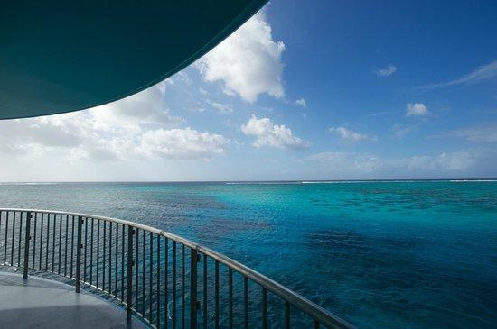 Fish Eye Marine Park:                   해상에서 보이는 풍경도 멋져요!