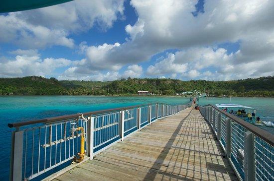 Fish Eye Marine Park:                   전망대에서 바라본 풍경