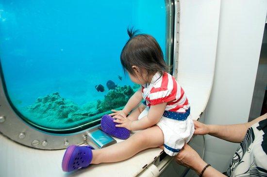Fish Eye Marine Park:                   수심 10m에 위치한 해중 전망대