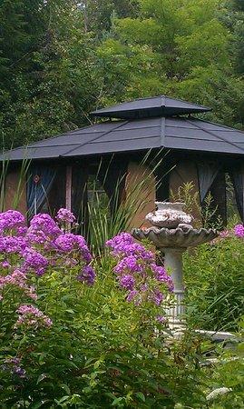 Colborne Guest House: Gazebo West Garden