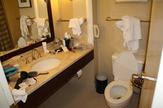 Hyatt Regency Boston:                   Small Bathroom