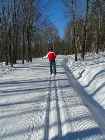 Trapp Family Lodge Outdoor Center:                   Groomed trails behind the Outdoor Center