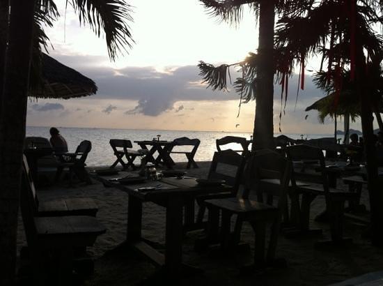 Milky Bay Resort Restaurant:                   View from Restaurant