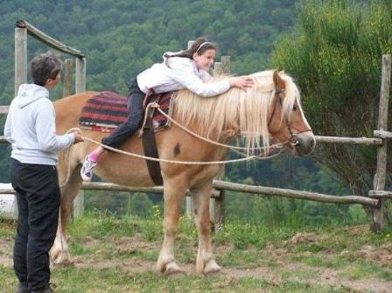 Agriturismo Il Cornacchino: Attività equestre per bambini