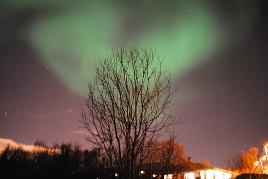 Sydspissen Hotel:                   The Northern lights - February 2013 - taken outside the hotel