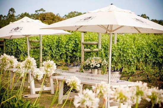 Bramon Wine Estate: Wedding Setup