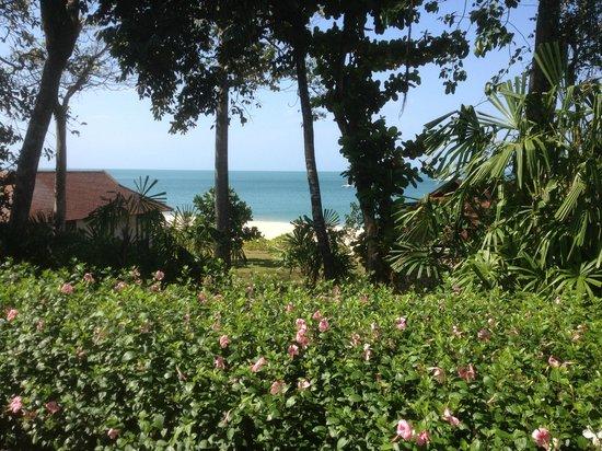 Pimalai Resort and Spa:                   Der Ausblick von der Terasse