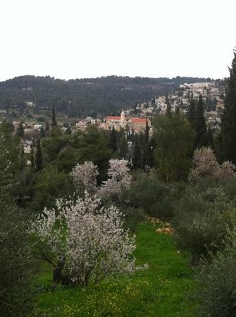 the view of ein kerem. Atalya place is on the right side
