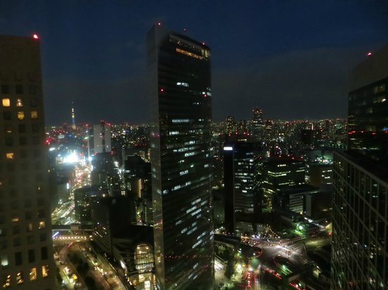 Park Hotel Tokyo:                   View from our room at night
