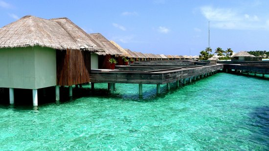 W Maldives:                                     Rooms