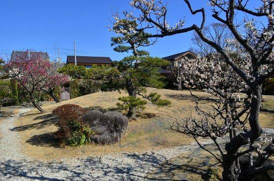 Shimizu House Garden